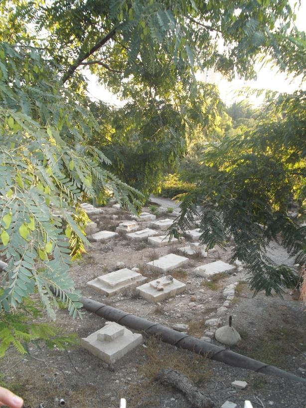 """Las brigadas por la paz visitaron el pasado campo de 2013 el cementerio sobre el que se construirá el """"Museo de la Tolerancia"""". Las obras ya han comenzado."""